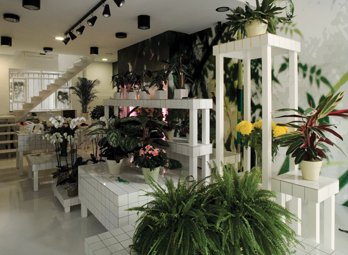 Status built program flower shop area 40 m2 budget 20 000 euros